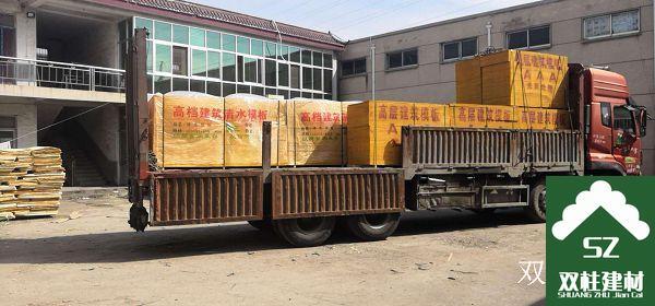 建筑模板生产车间 (182).jpg