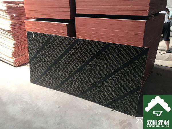 建筑模板生产车间 (145).jpg